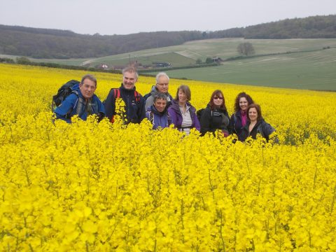 COPSE walkers enjoying the North Downs Way - February 2016