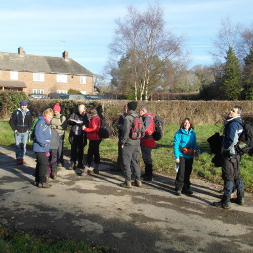 Read more about the article Yuletide Walk
